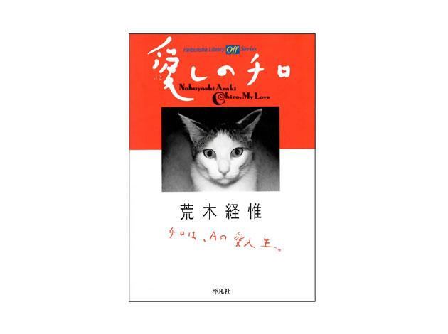 写真家 荒木経惟 チロ 日本で一番有名な猫